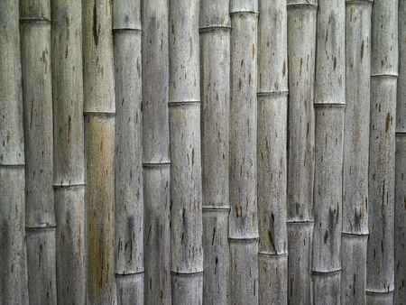 old rough texture japanese bamboo in vertical stripe pattern Stock Photo