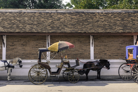 traditional carriage lampang city north of thailand with terracotta brick wall roof and green tree in background