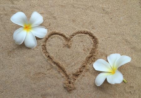 Heart drawn on sand beach Stock Photo - 11308056