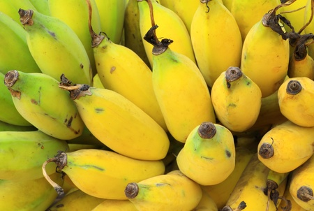 Bunch of ripe banana photo