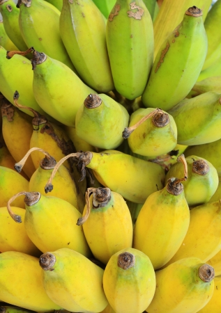cultivation: Bunch of ripe banana