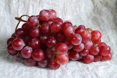 Red grapes Stock Photo - 14839301