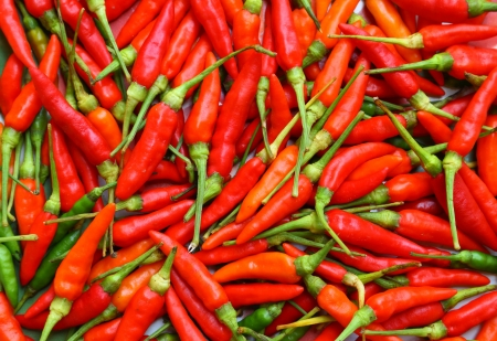 hot peppers: Red chili peppers