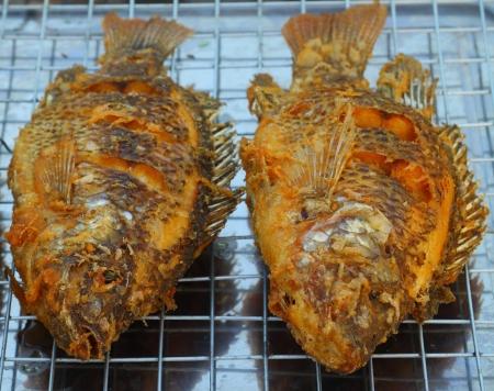 nilotica: Fried tilapia fish
