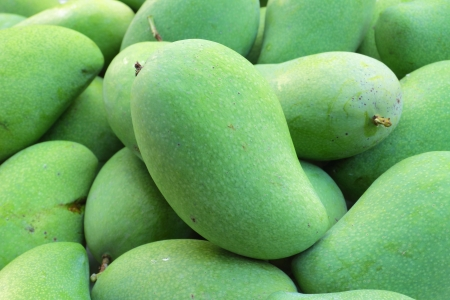 mango fruta: Mango verde Foto de archivo
