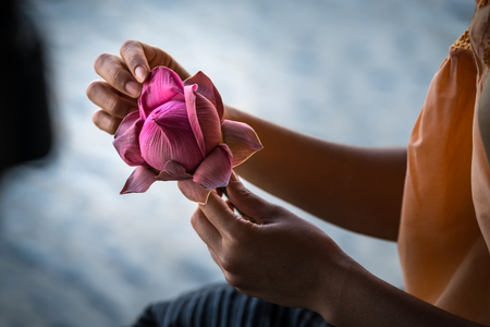 Hands folding lotus flower in Thai style.