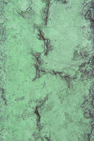 greenness: Green painted on concrete crack wall texture background Stock Photo