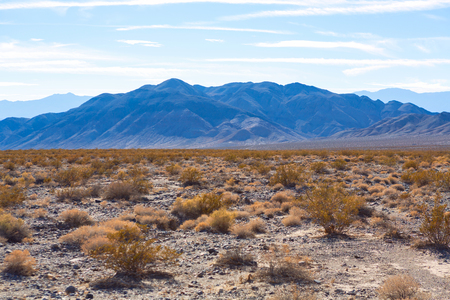 mountain and bush around Racetrack playa in death valley, California USA Stock Photo