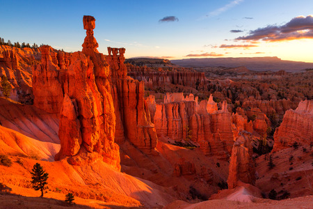 Thor's Hammer in Bryce Canyon National Park in Utah, USA Archivio Fotografico