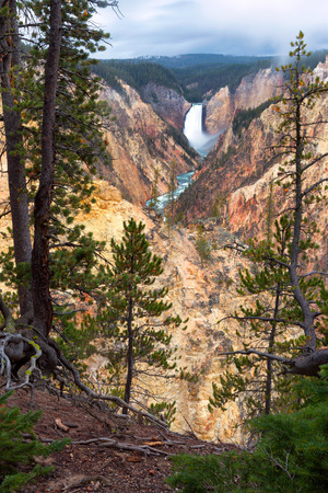 Morning fog lifts above the Lower Falls of the Yellowstone River