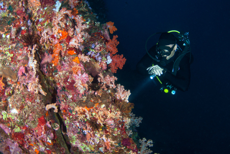 young man scuba diving on a beautiful soft coral reef in South Andaman,Krabi, Thailand Stock Photo