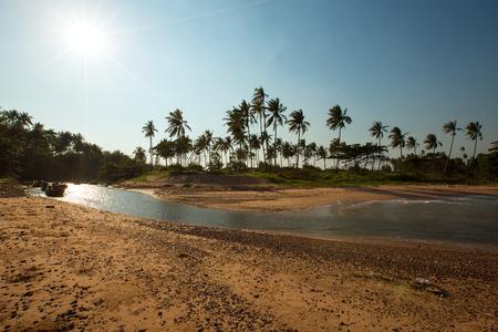 Panoramisch zicht op tropisch strand met kokospalmen. Koh Samui, Thailand