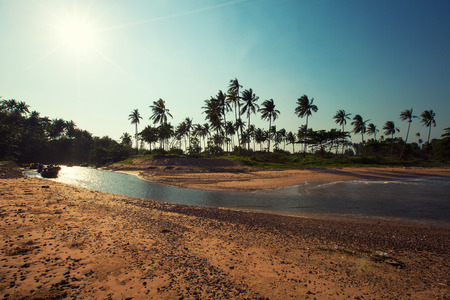 Panoramic view of tropical beach with coconut palm trees. Koh Samui, Thailand Stockfoto - 96141499