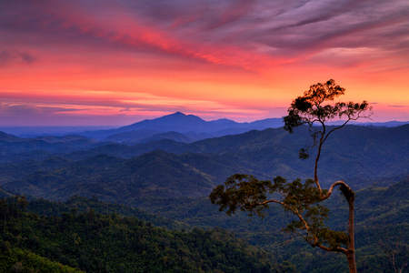 Sunset with beautiful sky mountain and tree in Phu Phaya Pho, Phrae Province, Thailand 免版税图像