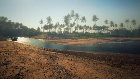 Panoramic view of tropical beach with coconut palm trees. Koh Samui, Thailand