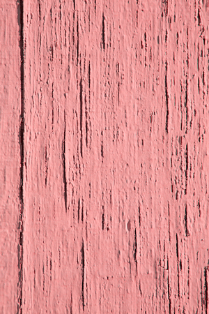 Vintage wood background and texture with coral or pink peeling paint.