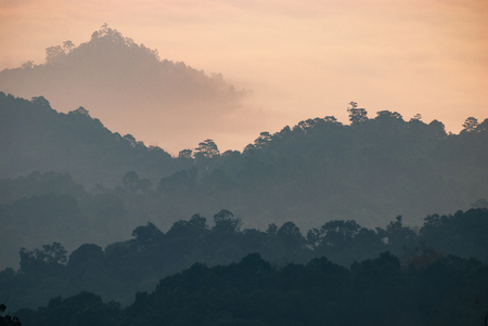 Layer of Mountain at Huay Nam Dung National Park, Located ChiangMai, Thailand Stock Photo