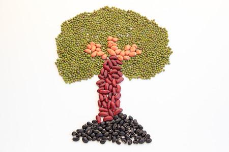leguminosas: Árbol hecho de nueces aislados en blanco.