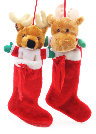 hristmas: Toy deer in hristmas socks isolated on a white background. Stock Photo