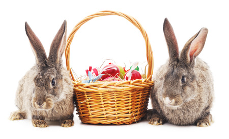 basket: Two Easter bunnies with colored eggs in the basket isolated on a white background.
