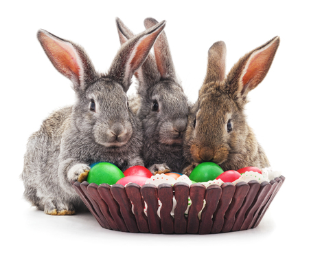 white eggs: Easter rabbits with colored eggs in the basket isolated on a white background. Stock Photo