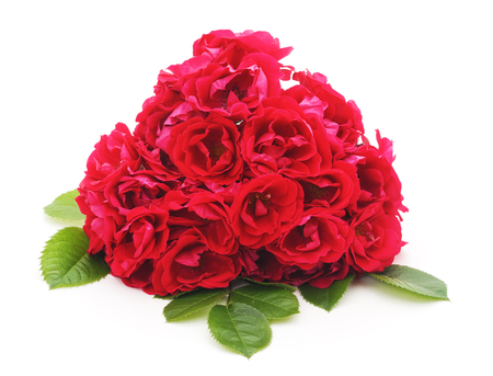 Bouquet red roses isolated on a white background.