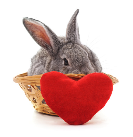 Little bunny in a basket with the heart on a white background. Stock fotó