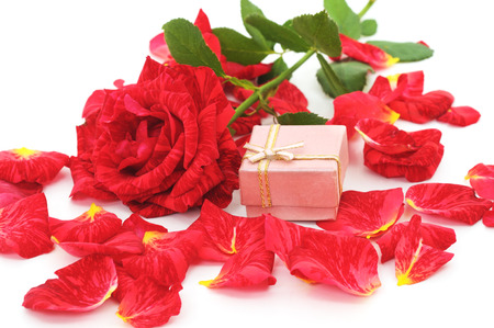 Red rose with gift box isolated on a white background.