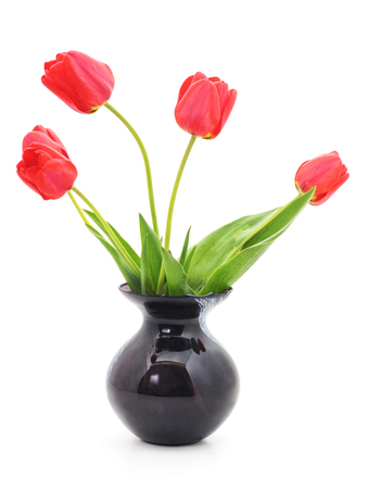 Bouquet of red tulips isolated on a white background. Standard-Bild - 116057246