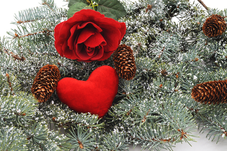 Winter Christmas tree with heart and rose and cones. Standard-Bild - 116057351