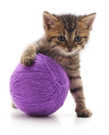 Kitten and ball isolated on white background. Standard-Bild - 116057361