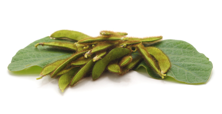Green soybean pods isolated on a white background. Standard-Bild - 116057402