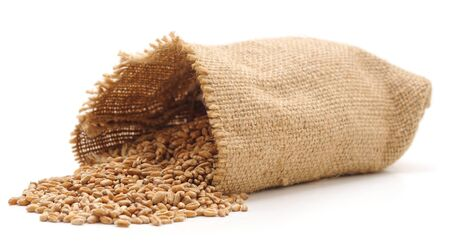 Wheat is poured from the sack isolated on a white background. Banque d'images