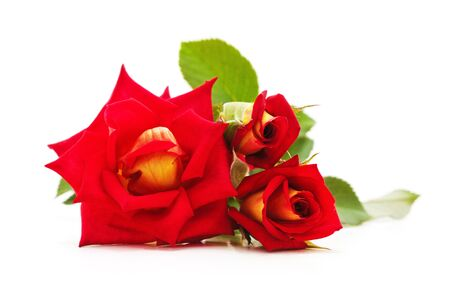Bouquet red roses isolated on a white background. Imagens - 129677470