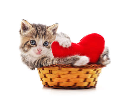 Kitten in a basket with the heart isolated on a white background. Stock Photo