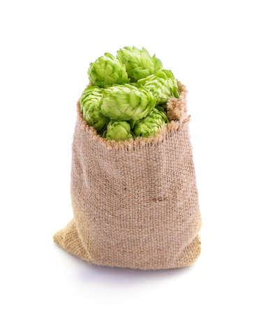 Hop cones in a bag isolated on a white background.