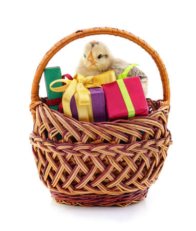 Chicken in the basket with gifts isolated on a white background.