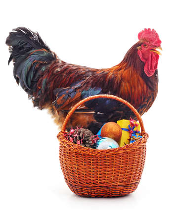 Cock near a Christmas basket on a white background.