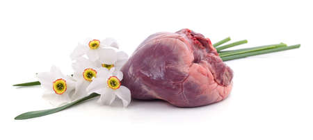 Fresh pork heart and white narcissus isolated on a white background.