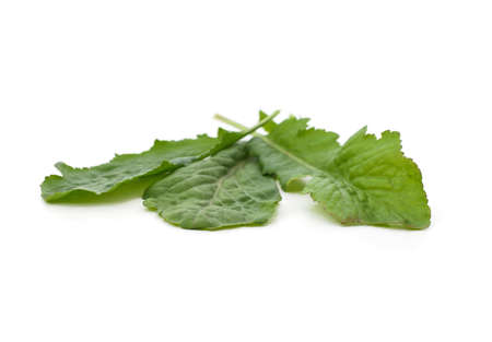 Green arugula leaves isolated on a white background.