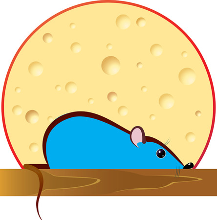 The hidden blue mouse against a cheese head.