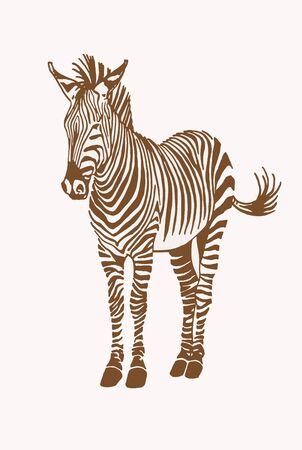 Graphical vintage zebra, sepia background, vector illustration