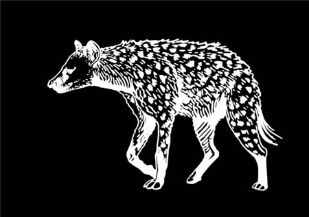 Graphical hyena isolated on black background, vector illustration