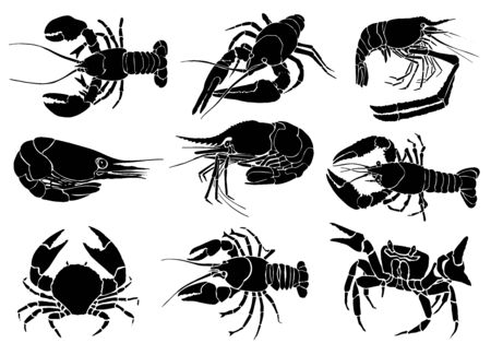 Graphical hand-drawn set of sea food isolated on white background, vector illustration