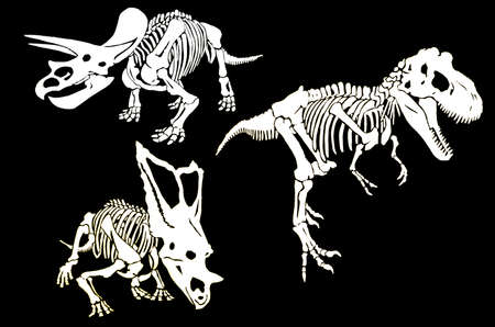 Graphical set of skeletons of dinosaurs isolated on black background, vector