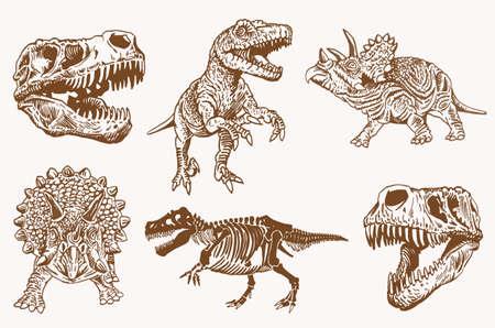 Graphical vintage set of skulls and skeleton of dinosaur,vector bone fossils,paleontology elements