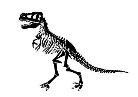 Graphical skeleton of tyrannosaurus isolated on white background,vector illustration ,fossils Vektoros illusztráció
