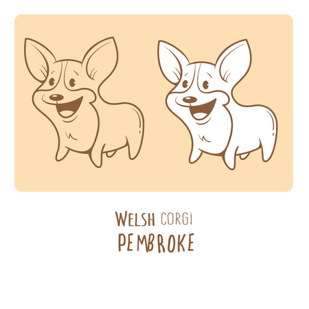 pembroke: Card with cute cartoon dog breed Welsh Corgi Pembroke. Childrens illustration. Little puppy. Funny baby animal.  image. Two variants contour  image, transparent background and white fill.
