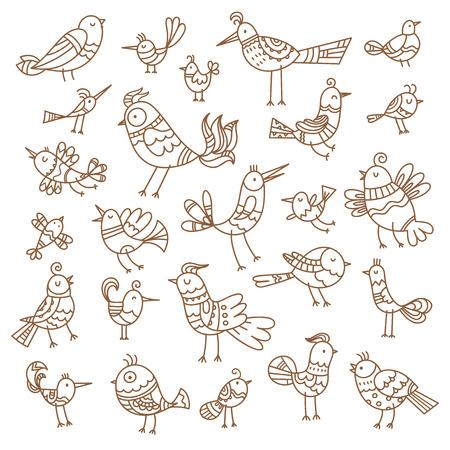 Conjunto de pájaros de dibujos animados lindo. Imagen de contorno vectorial sin relleno. Estilo Doodle. Ilustración infantil. Animales divertidos.