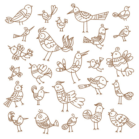 Ensemble d'oiseaux de dessin animé mignon. Image de contour vectoriel sans remplissage. Style de griffonnage. Illustration pour enfants. Animaux drôles.